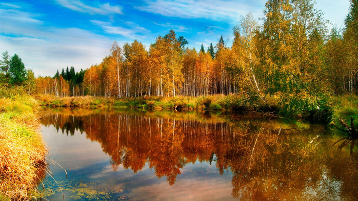 _Autumn_0079 (700x393, 476Kb)