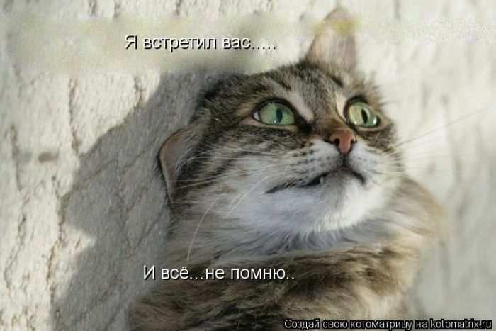 1342938283_kotomatritsa_03 (700x467, 107Kb)