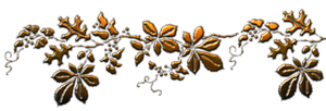 0_8482d_f0b5ec0e_M (300x102, 46Kb)