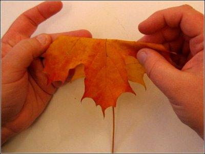 Розы из осенних листьев своими руками (8) (400x300, 88Kb)