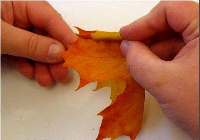 Розы из осенних листьев своими руками (10) (400x280, 85Kb)