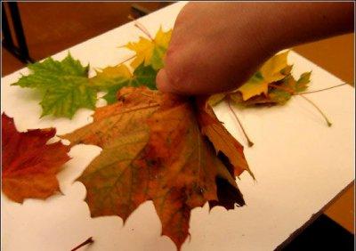 Розы из осенних листьев своими руками (24) (400x282, 100Kb)