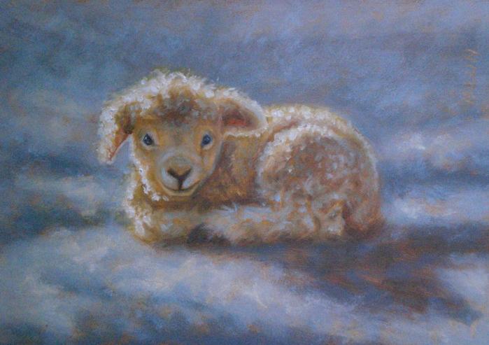 Favorite_Lamb.35584720_large (700x493, 404Kb)