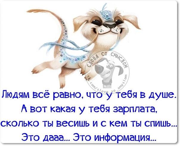 http://img0.liveinternet.ru/images/attach/c/11/117/317/117317632_16.jpg