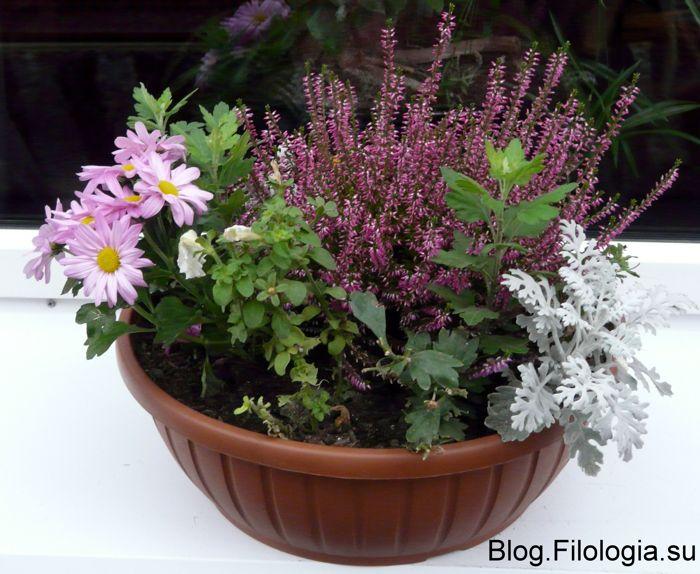 3241858_flowers03 (700x574, 74Kb)