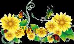 5477271_140193ae2a9a (150x89, 25Kb)