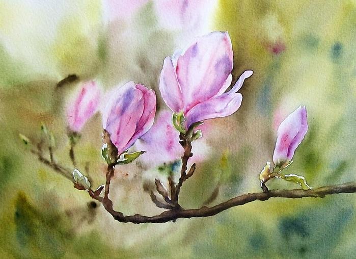 magnoliowa-wiosna (700x508, 383Kb)