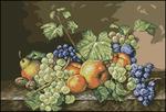 ������ G 364 Natura cu Fructe (500x340, 298Kb)