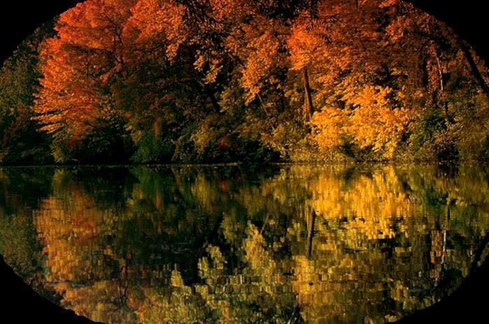 pond-115537_640 (700x464, 734Kb)