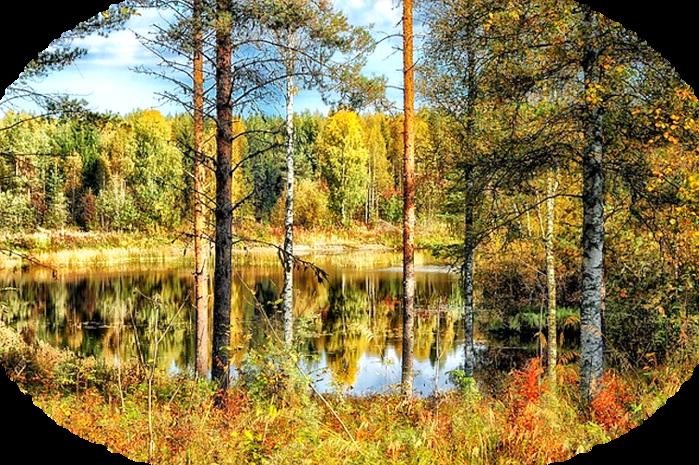 finland-185853_640 (700x465, 889Kb)