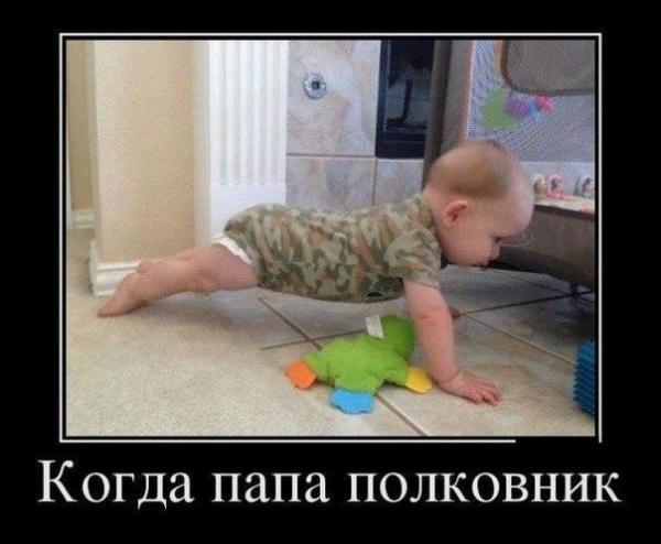 smeshnie_kartinki_141363780518 (600x494, 150Kb)