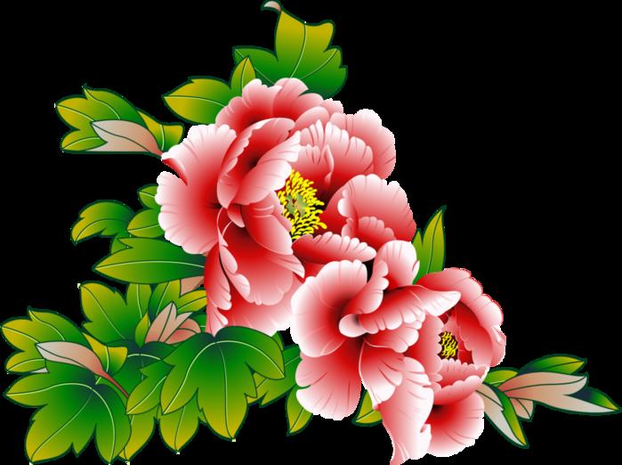 Рисованные цветы-Клипарт PNG.. Обсуждение на LiveInternet ... Лидия Арт