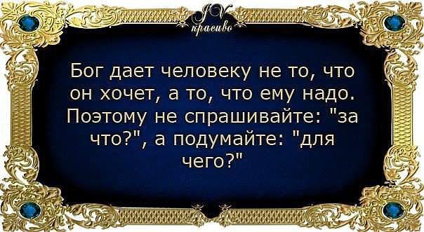 3416556_image_1 (604x331, 57Kb)