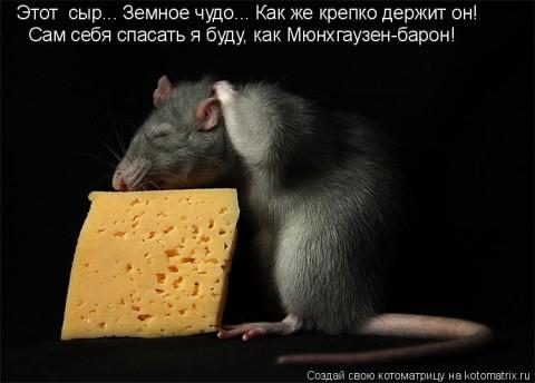 http://img0.liveinternet.ru/images/attach/c/11/117/400/117400372_big__43_.jpg