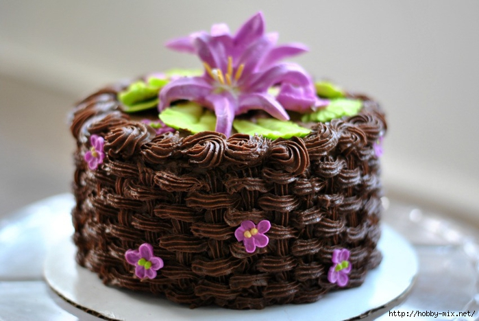 cake-full-picture-horizontal (700x468, 211Kb)