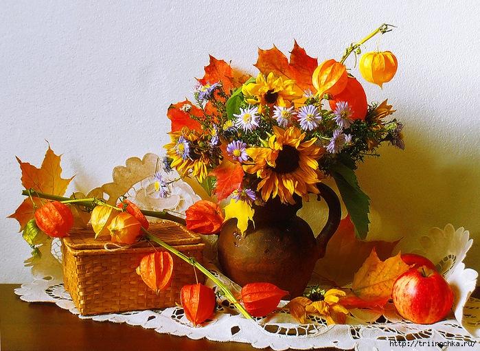 Картинки цветов осенних