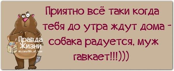 1401217506_frazochki-5 (604x247, 120Kb)