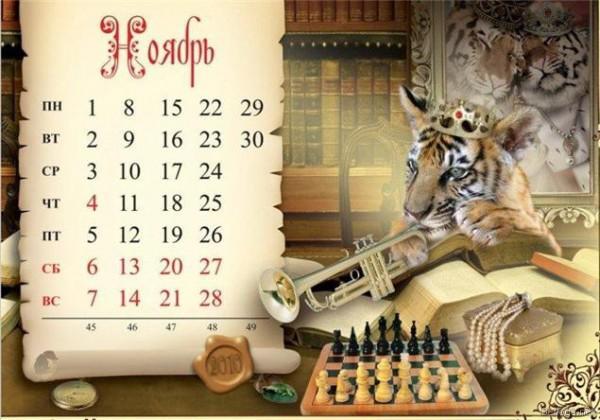 3667889_1262632951_tiger011 (600x420, 45Kb)
