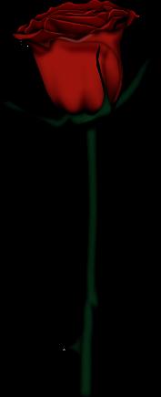 0_87811_171a570f_L (177x435, 24Kb)