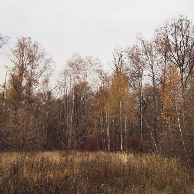 06 Осенний мороз (640x640, 448Kb)