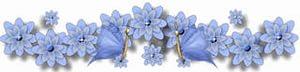 i голуб цветы (300x72, 6Kb)