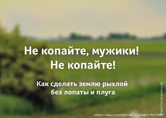 5177462_nkm (580x414, 101Kb)