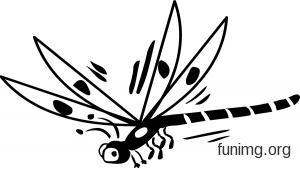 Трафареты стрекоз для декора своими руками шаблоны
