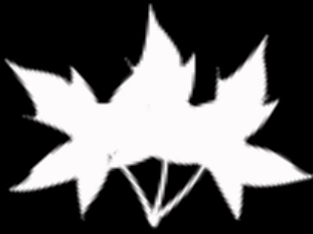 маска 3 (640x480, 58Kb)