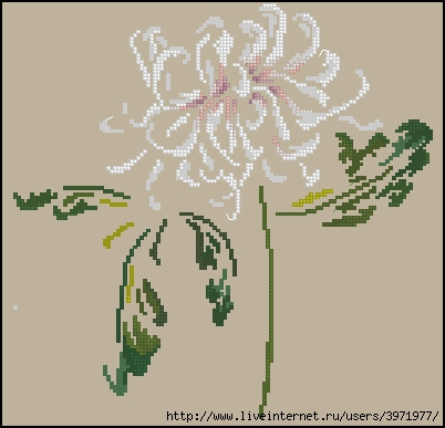 3971977_DMCChrysanthemum (402x387, 78Kb)