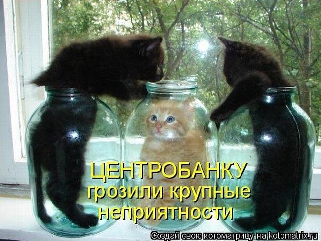 http://img0.liveinternet.ru/images/attach/c/11/117/66/117066104_0c1376ce81fb8de1bf5030d1c053acab.jpg