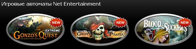 3934161_Net_Entertainment (665x167, 142Kb)