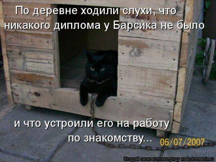 1412530449_24-www.radionetplus.ru (700x525, 190Kb)