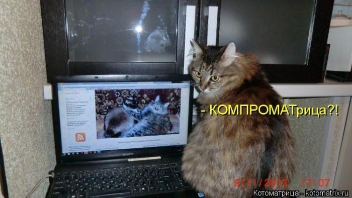 1412530473_14-www.radionetplus.ru (700x394, 134Kb)