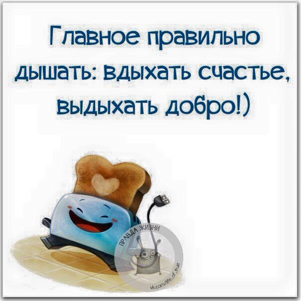 12651257_974156115998725_4329835683803769249_n (604x604, 37Kb)