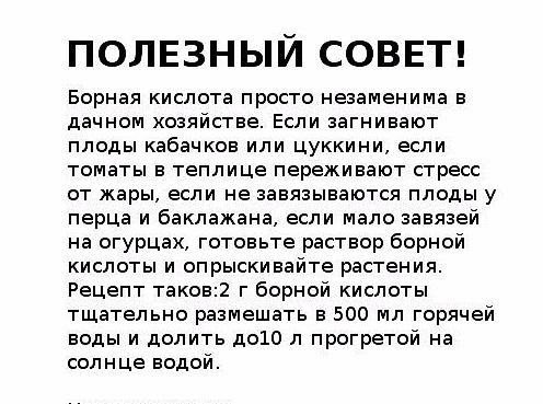 123355448_128 (496x369, 185Kb)