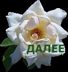 0_9d87e_d800ad12_S (142x150, 41Kb)