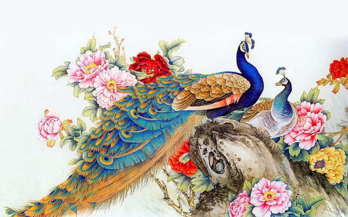 peacock-wallpaper-free-peacock-feather-wallpaper-desktop-free-download-for-walls-uk-wallpapers-high-quality-home-border-android-iphone (700x437, 384Kb)