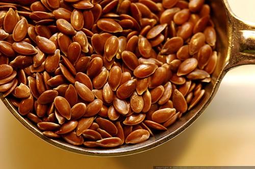 льняное семя (500x333, 64Kb)