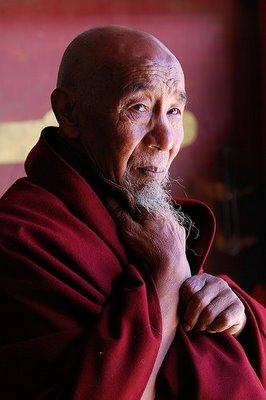 tibetan-monk (266x400, 19Kb)