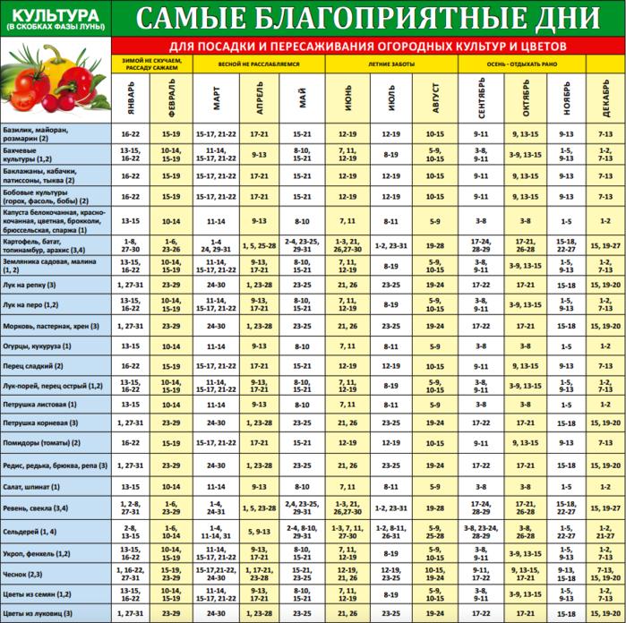 3863677_posadka (700x696, 384Kb)