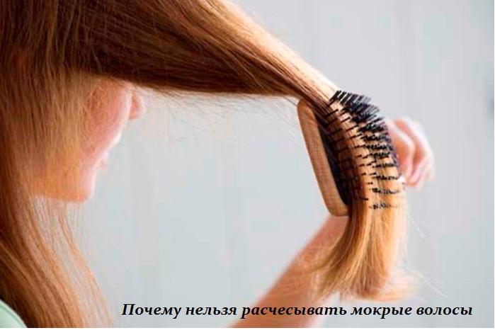1454776575_Pochemu_nel_zya_raschesuyvat__mokruye_volosuy (699x466, 316Kb)