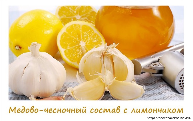 4037178_Stranica1_1_ (676x424, 150Kb)
