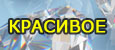 4425087_poddloska_02 (115x50, 16Kb)