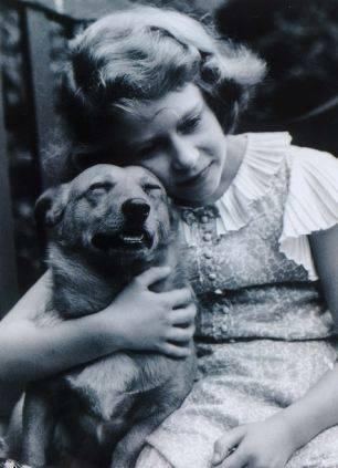 Королевские собаки Собака, Елизавета II, длиннопост (306x423, 21Kb)