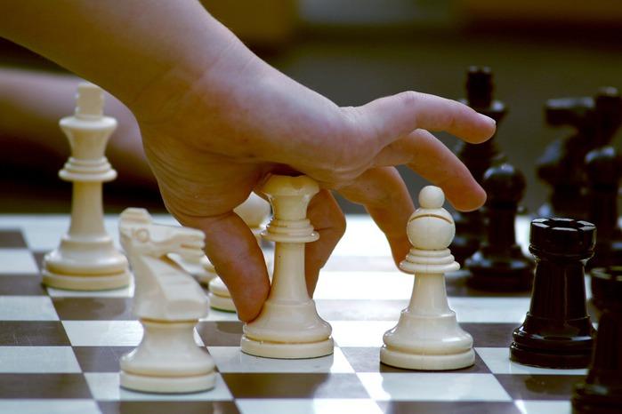5893242_196d06daa8014eb5_1280_chess_2_ (700x466, 65Kb)