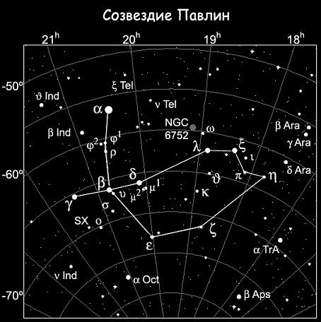 5996857_SozvezdiePavlin (454x456, 95Kb)