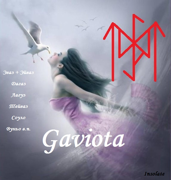 5850402_Gaviota (574x606, 67Kb)