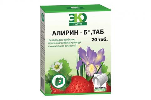 alirin-b (383x272)