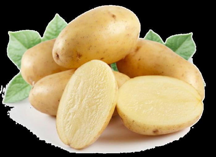 5177462_potato (700x507, 334Kb)