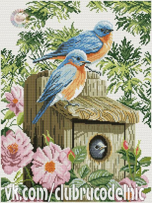 Garden blue birds (523x700, 677Kb)
